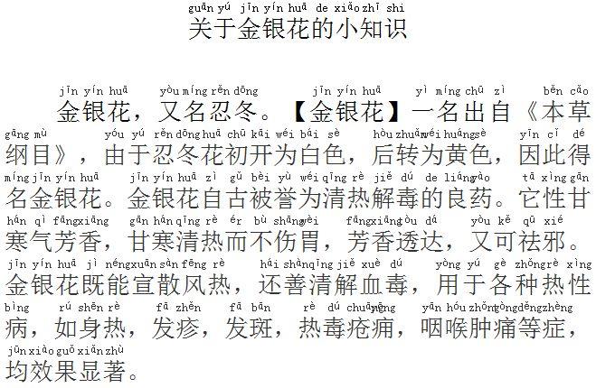 金銀花涼茶中国語説明