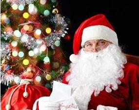 圣诞节 (3)