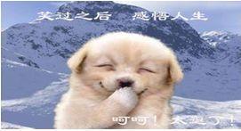 中国笑话 (2)