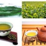 阿里山茶 (1)